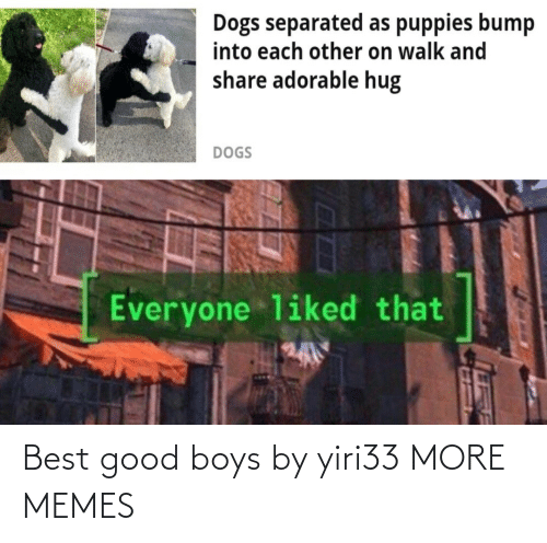 boys: Best good boys by yiri33 MORE MEMES