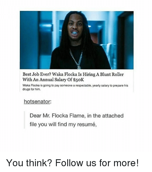 annuale: Best Job Ever? Waka Flocka Is Hiring A Blunt Roller  With An Annual Salary Of $50K  Waka Flocka is going to pay someone a respectable, yearly salary to prepare his  drugs for him.  hotsenator:  Dear Mr. Flocka Flame, in the attached  file you will find my resumé, You think? Follow us for more!