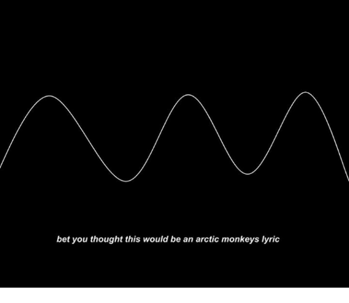 arctic monkeys: bet you thought this would be an arctic monkeys lyric