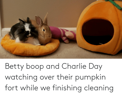Pumpkin: Betty boop and Charlie Day watching over their pumpkin fort while we finishing cleaning