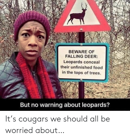 tops: BEWARE OF  FALLING DEER:  Leopards conceal  their unfinished food  in the tops of trees.  But no warning about leopards? It's cougars we should all be worried about…