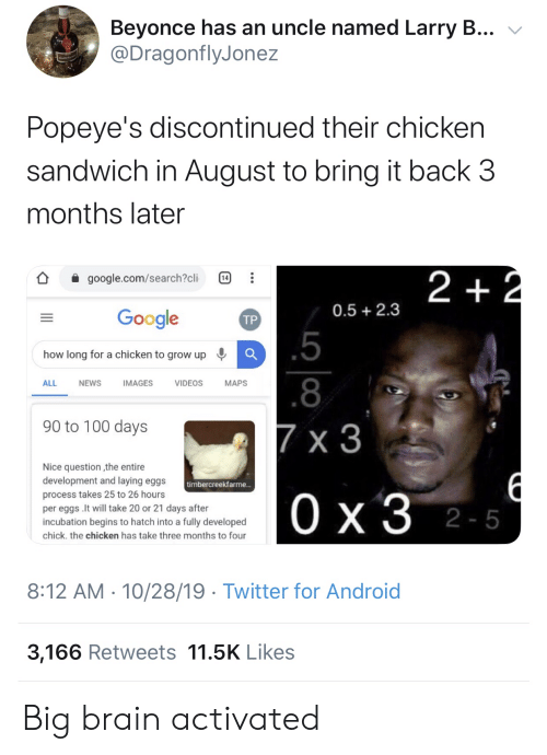popeyes: Beyonce has an uncle named Larry B...  @DragonflyJonez  Popeye's discontinued their chicken  sandwich in August to bring it back 3  months later  2 +2  google.com/search?cli  14  0.5 2.3  Google  ТР  .5  how long for a chicken to grow up  .8  ALL  NEWS  IMAGES  VIDEOS  МAPS  90 to 100 days  7 x 3  Nice question the entire  development and laying eggs  timbercreekfarme...  process takes 25 to 26 hours  Ох3 2-5  per eggs .It will take 20 or 21 days after  incubation begins to hatch into a fully developed  chick. the chicken has take three months to four  8:12 AM 10/28/19 Twitter for Android  3,166 Retweets 11.5K Likes  1P  .. Big brain activated