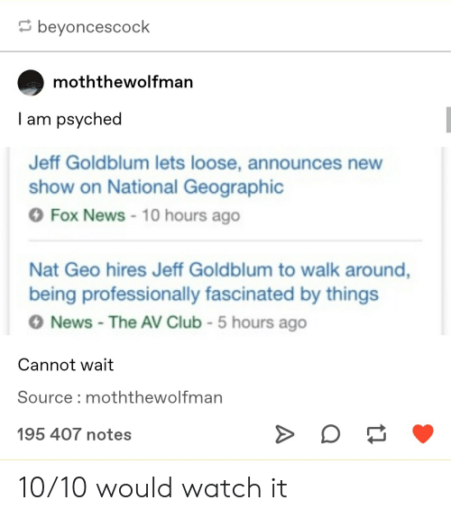 Club, News, and Tumblr: beyoncescock  moththewolfman  I am psyched  Jeff Goldblum lets loose, announces new  show on National Geographic  OFox News 10 hours ago  Nat Geo hires Jeff Goldblum to walk around,  being professionally fascinated by things  News - The AV Club -5 hours ago  Cannot wait  Source : moththewolfman  195 407 notes 10/10 would watch it