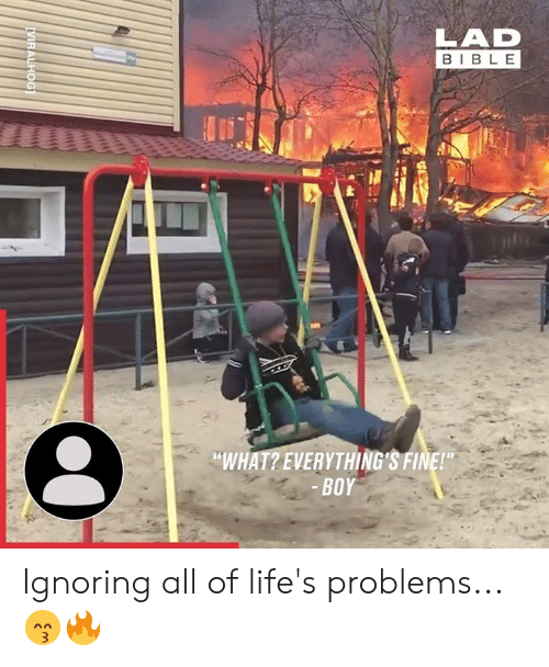 """Dank, Bible, and Boy: BIBLE  """"WHAT? EVERYTHING'S FINE!  BOY Ignoring all of life's problems... 😙🔥"""