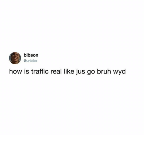 Bruh, Dank, and Traffic: bibson  @unbibs  how is traffic real like jus go bruh wyd
