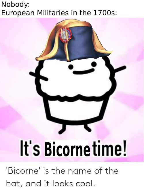 hat: 'Bicorne' is the name of the hat, and it looks cool.