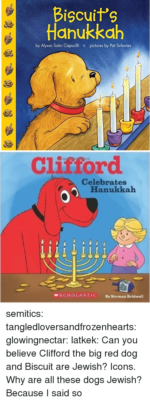 Scholasticism: Bicuits  Hanukkah  by Alyssa Satin Copucilhi  pictures by Pat Schories   Clistord  Celebrates  Hanukkah  SCHOLASTIC  By Norman Brldwell semitics: tangledloversandfrozenhearts:   glowingnectar:  latkek: Can you believe Clifford the big red dog and Biscuit are Jewish? Icons.   Why are all these dogs Jewish?   Because I said so