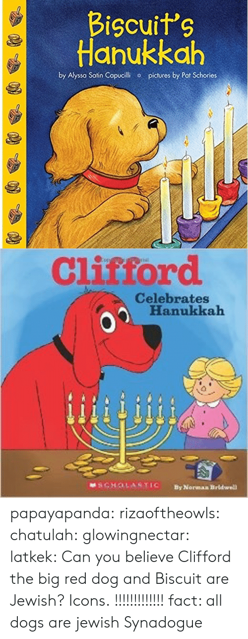 Scholasticism: Bicuits  Hanukkah  by Alyssa Satin Copucilhi  pictures by Pat Schories   Clistord  Celebrates  Hanukkah  SCHOLASTIC  By Norman Brldwell papayapanda: rizaoftheowls:   chatulah:  glowingnectar:   latkek: Can you believe Clifford the big red dog and Biscuit are Jewish? Icons.   !!!!!!!!!!!!!   fact: all dogs are jewish   Synadogue