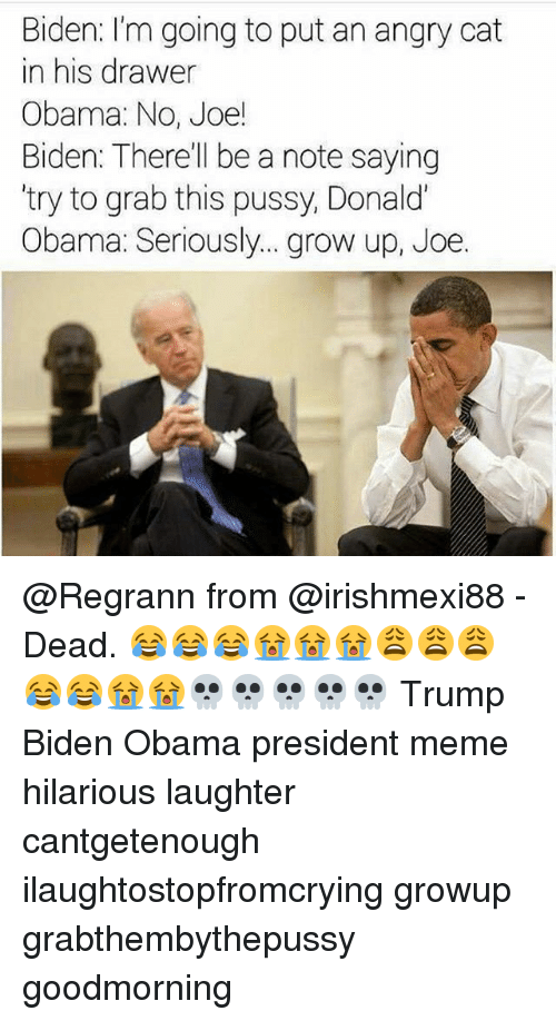 Joe Biden, Meme, and Memes: Biden: I'm going to put an angry cat  in his drawer  Obama: No, Joe!  Biden: There'll be a note saying  try to grab this pussy, Donald  Obama: Seriously... grow up, Joe. @Regrann from @irishmexi88 - Dead. 😂😂😂😭😭😭😩😩😩😂😂😭😭💀💀💀💀💀 Trump Biden Obama president meme hilarious laughter cantgetenough ilaughtostopfromcrying growup grabthembythepussy goodmorning