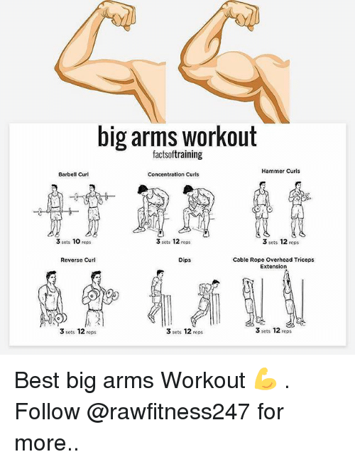 Memes, Best, and 🤖: big arms workout  Hammer Curls  Barbell Curl  Concentration Curls  3 sets 10  reps  3 sets 12  reps  3 sets 12  reps  Cable Rope Overhead Triceps  Reverse Curl  Dips  Extension  3 sets 12  reps  3 sets 12  reps  3 sets 12  reps Best big arms Workout 💪 . Follow @rawfitness247 for more..