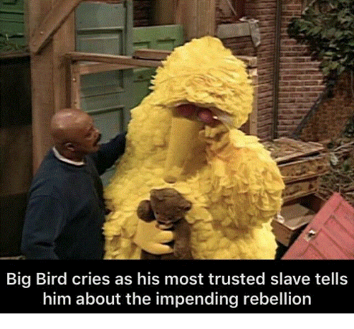 impending: Big Bird cries as his most trusted slave tells  him about the impending rebellion