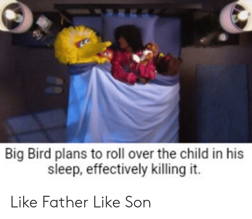 Big Bird Plans To Roll Over The Child In His Sleep