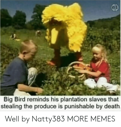 Dank, Memes, and Target: Big Bird reminds his plantation slaves that  stealing the produce is punishable by death Well by Natty383 MORE MEMES