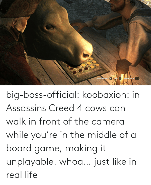 boss: big-boss-official: koobaxion: in Assassins Creed 4 cows can walk in front of the camera while you're in the middle of a board game, making it unplayable. whoa… just like in real life