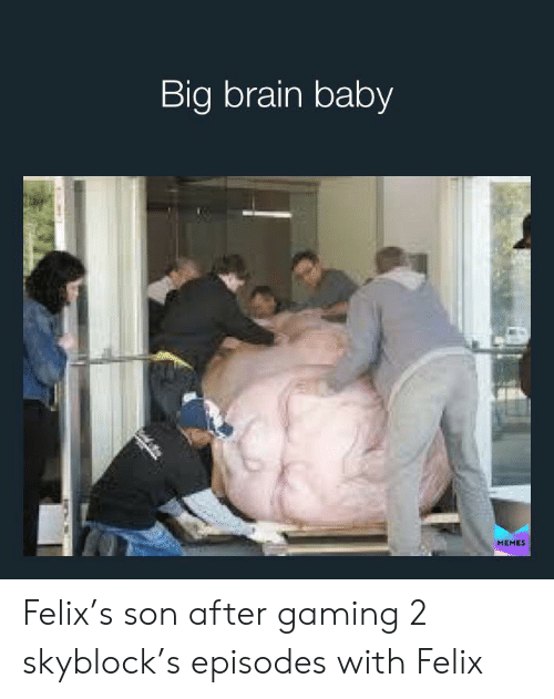 baby memes: Big brain baby  MEMES Felix's son after gaming 2 skyblock's episodes with Felix