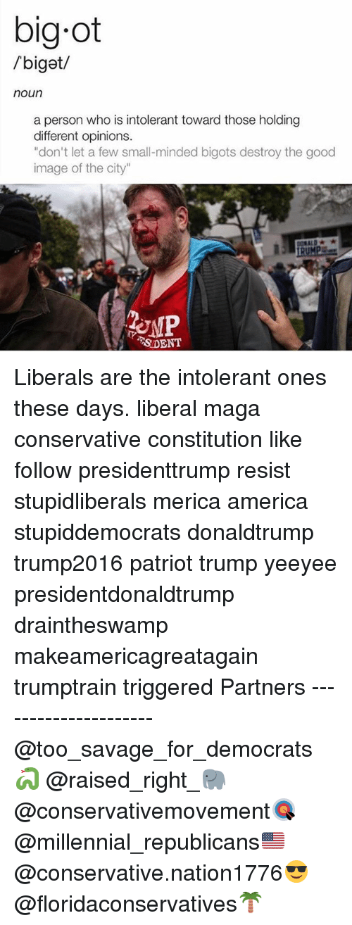 """America, Memes, and Savage: big ot  /biget/  noun  a person who is intolerant toward those holding  different opinions.  """"don't let a few small-minded bigots destroy the good  image of the city""""  SDENT Liberals are the intolerant ones these days. liberal maga conservative constitution like follow presidenttrump resist stupidliberals merica america stupiddemocrats donaldtrump trump2016 patriot trump yeeyee presidentdonaldtrump draintheswamp makeamericagreatagain trumptrain triggered Partners --------------------- @too_savage_for_democrats🐍 @raised_right_🐘 @conservativemovement🎯 @millennial_republicans🇺🇸 @conservative.nation1776😎 @floridaconservatives🌴"""