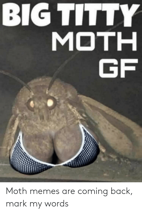 Memes Are Coming: BIG TITTY  MOTH  GF Moth memes are coming back, mark my words