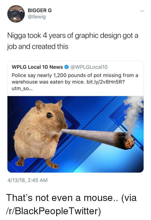 Bailey Jay, Blackpeopletwitter, and News: BIGGER G  @llewig  Nigga took 4 years of graphic design got a  job and created this  WPLG Local 10 News e》 @WPLG Local10  Police say nearly 1,200 pounds of pot missing froma  warehouse was eaten by mice. bit.ly/2v8Hn5R?  utm_so...  4/13/18, 2:45 AM <p>That's not even a mouse.. (via /r/BlackPeopleTwitter)</p>