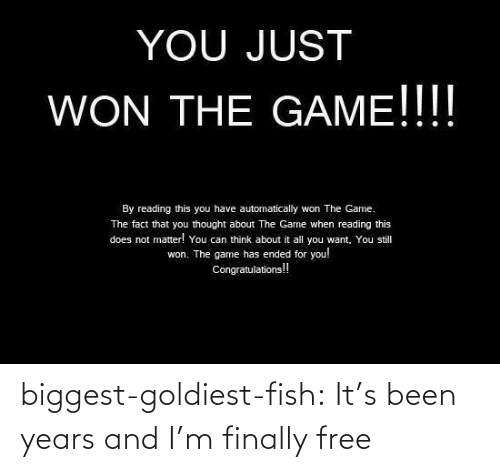 Free: biggest-goldiest-fish: It's been years and I'm finally free