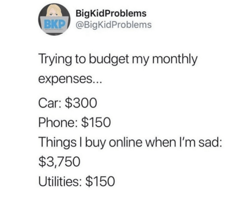 Monthly: BigKidProblems  BKP @BigKidProblems  Trying to budget my monthly  expenses...  Car: $300  Phone: $150  Things I buy on line when I'm sad:  $3,750  Utilities: $150