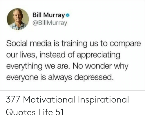 inspirational quotes: Bill Murray  @BillMurray  Social media is training us to compare  our lives, instead of appreciating  everything we are. No wonder why  everyone is always depressed 377 Motivational Inspirational Quotes Life 51