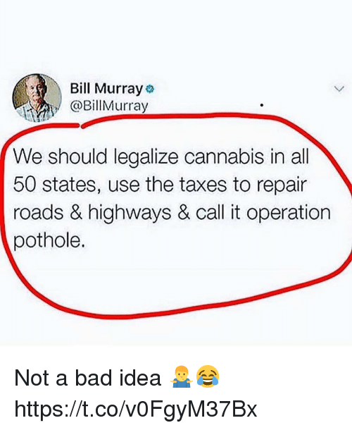 Bill Murray: Bill Murray  @BillMurray  We should legalize cannabis in all  50 states, use the taxes to repair  roads & highways & call it operation  pothole. Not a bad idea 🤷♂️😂 https://t.co/v0FgyM37Bx