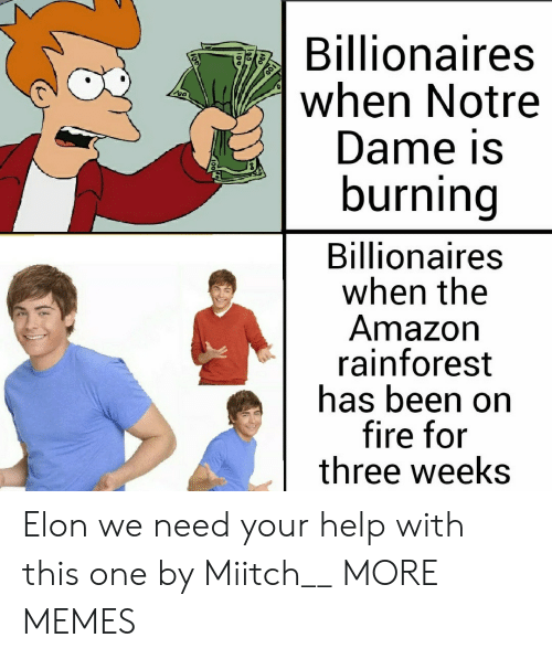 dame: Billionaires  when Notre  Dame is  burning  Billionaires  when the  Amazon  rainforest  has been on  fire for  three weeks Elon we need your help with this one by Miitch__ MORE MEMES