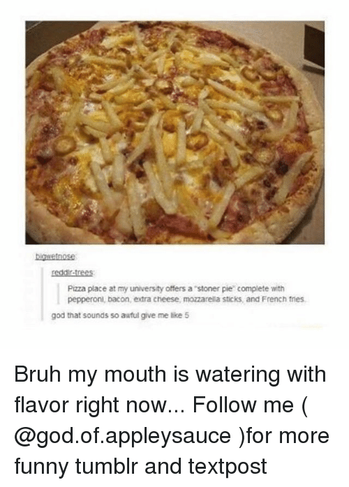 Bruh, Funny, and God: binvetnose  reddir-trees  Pizza place at my university offers a stoner pie complete with  pepperoni, bacon, extra cheese, mozzarelia sticks, and French tnes  god that sounds so awful give me like 5 Bruh my mouth is watering with flavor right now... Follow me ( @god.of.appleysauce )for more funny tumblr and textpost