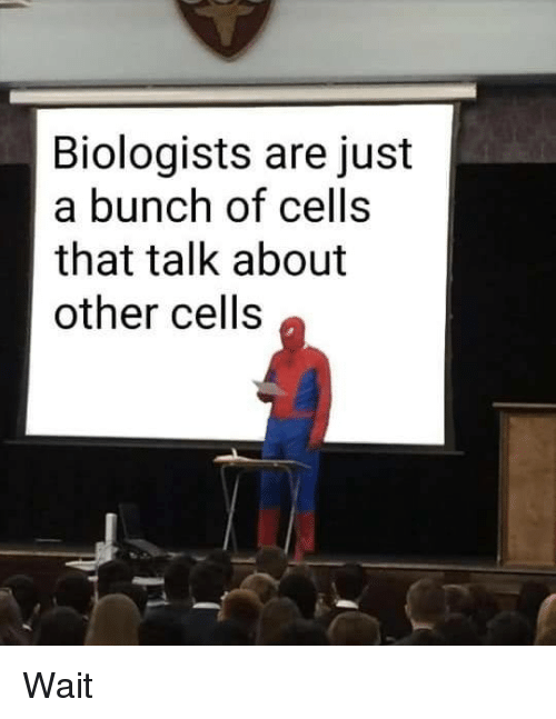 Memes, 🤖, and Just: Biologists are just  a bunch of cells  that talk about  other cells Wait
