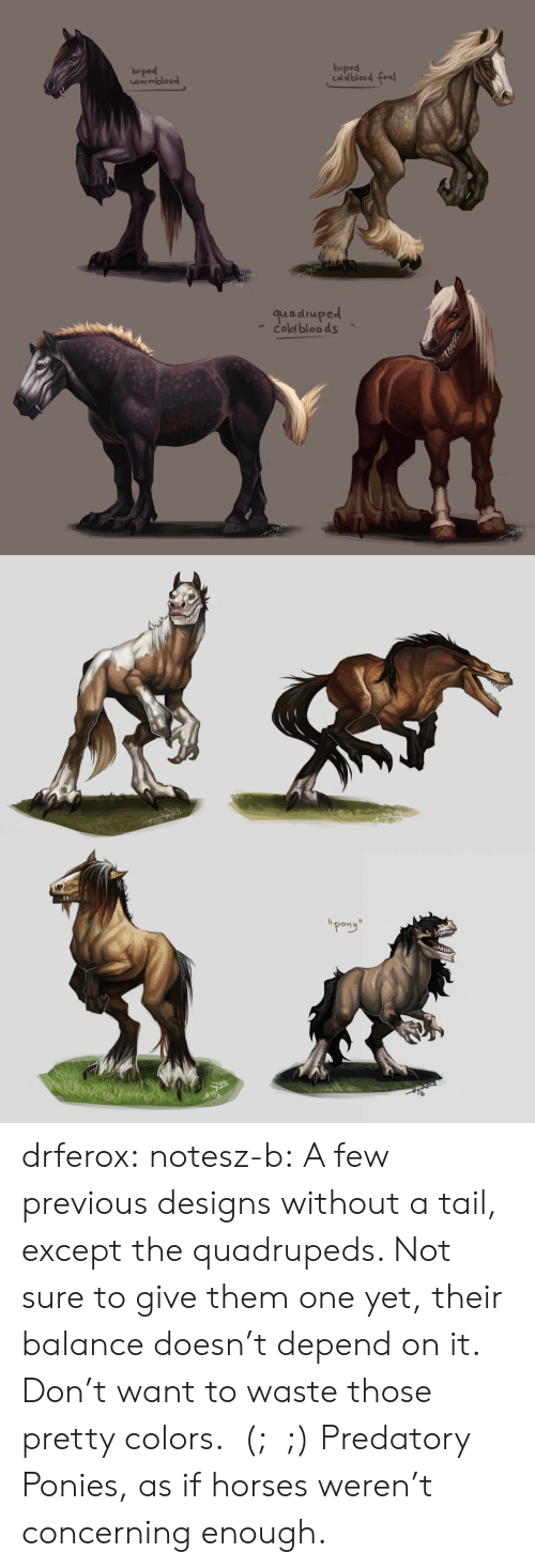 """Concerning: biped  biped  Caldblood fea  wrmbloo  quadruped  coled bloo ds   """"pong"""" drferox:  notesz-b:  A few previous designs without a tail, except the quadrupeds. Not sure to give them one yet, their balance doesn't depend on it. Don't want to waste those pretty colors.  (;﹏;)    Predatory Ponies, as if horses weren't concerning enough."""