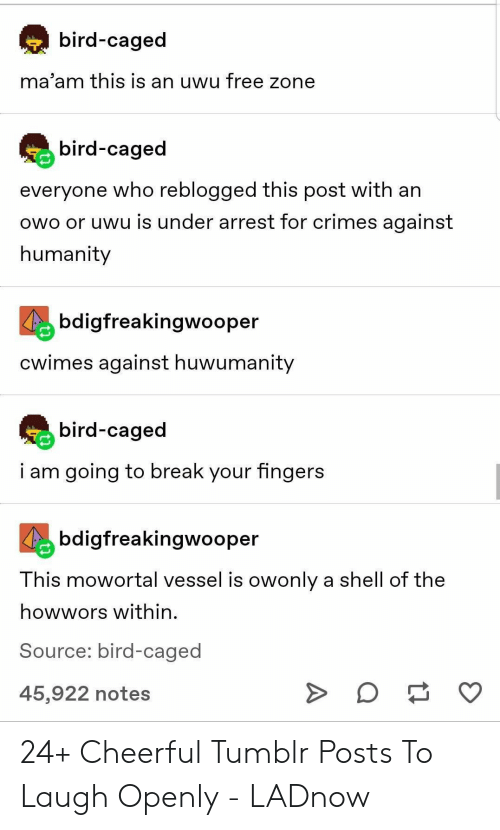 i am going to: bird-caged  ma'am this is an uwu free zone  bird-caged  everyone who reblogged this post with an  owo or uwu is under arrest for crimes against  humanity  bdigfreakingwooper  Cwimes against huwumanity  bird-caged  i am going to break your fingers  bdigfreakingwooper  This mowortal vessel is owonly a shell of the  howwors within  Source: bird-caged  O  45,922 notes 24+ Cheerful Tumblr Posts To Laugh Openly - LADnow