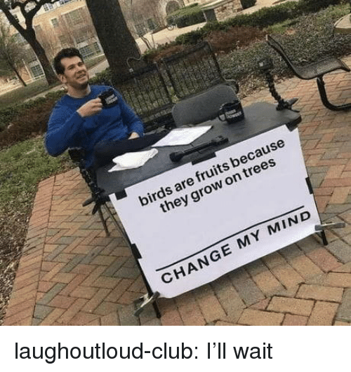 Ill Wait: birds are fruits because  they grow on trees  CHANGE MY MIND laughoutloud-club:  I'll wait