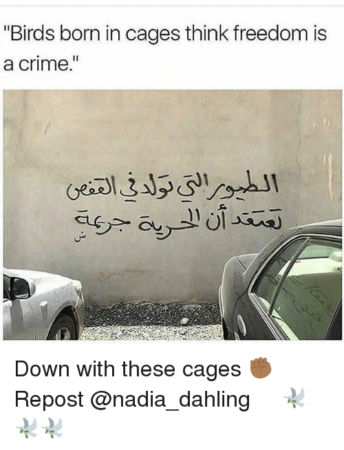 "Nadia: ""Birds born in cages think freedom is  a crime  I1 Down with these cages ✊🏾 Repost @nadia_dahling ・・・ 🕊🕊🕊"