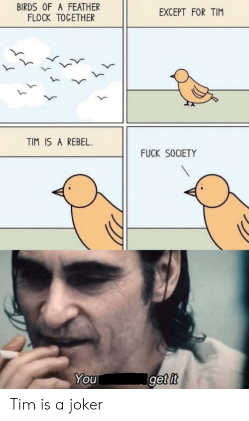 Except For: BIRDS OF A FEATHER  FLOCK TOGETHER  EXCEPT FOR TIM  TIM IS A REBEL  FUCK SOCIETY  Iget it  You Tim is a joker