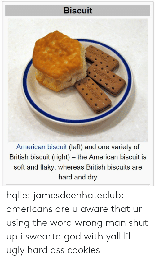 Shut Up: Biscuit  American biscuit (left) and one variety of  British biscuit (right) - the American biscuit is  soft and flaky; whereas British biscuits are  hard and dry hqlle:  jamesdeenhateclub:  americans are u aware that ur using the word wrong  man shut up i swearta god with yall lil ugly hard ass cookies