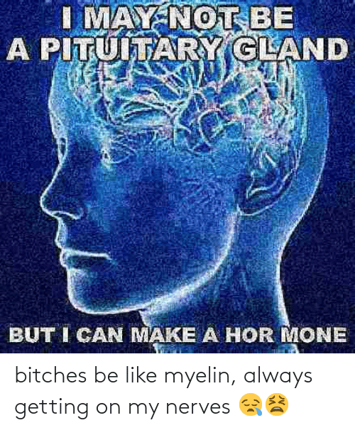 nerves: bitches be like myelin, always getting on my nerves 😪😫