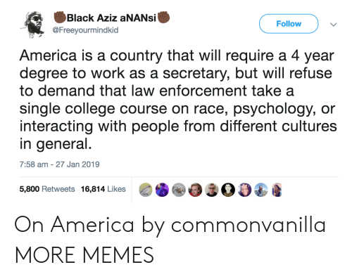 Enforcement: Black Aziz aNANsi  @Freeyourmindkid  Follow  America is a country that will require a 4 year  degree to work as a secretary, but will refuse  to demand that law enforcement take a  single college course on race, psychology, or  interacting with people from different cultures  in general  7:58 am -27 Jan 2019  5,800 Retweets 16,814 Likes00 On America by commonvanilla MORE MEMES