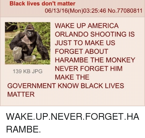 wake up america: Black lives don't matter  06/13/16 (Mon)03:25:46 No. 77080811  WAKE UP AMERICA  ORLANDO SHOOTING IS  JUST TO MAKE US  FORGET ABOUT  HARAMBE THE MONKEY  139 KB JPG  NEVER FORGET HIM  MAKE THE  GOVERNMENT KNOW BLACK LIVES  MATTER WAKE.UP.NEVER.FORGET.HARAMBE.