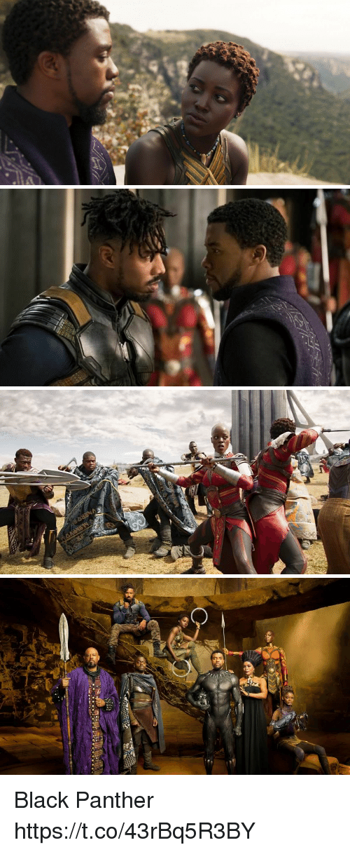 Memes, Black, and Black Panther: Black Panther https://t.co/43rBq5R3BY