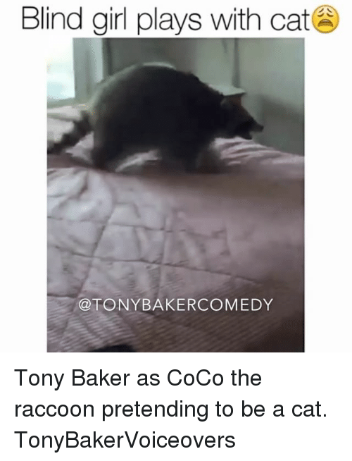 The Raccoons: Blind girl plays with cat  @TONY BAKER COMEDY Tony Baker as CoCo the raccoon pretending to be a cat. TonyBakerVoiceovers
