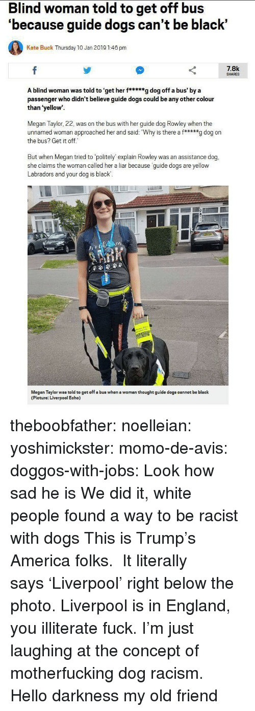 America, Dogs, and England: Blind woman told to get off bus  'because guide dogs can't be black'  Kate Buck Thursday 10 Jan 2019 1:46 pm  7.8k  SHARES  A blind woman was told to 'get her f*****g dog off a bus' by a  passenger who didn't believe guide dogs could be any other colour  than 'yellow  Megan Taylor, 22, was on the bus with her guide dog Rowley when the  unnamed woman approached her and said: Why is there a f*****g dog on  the bus? Get it off  But when Megan tried to politely' explain Rowley was an assistance dog,  she claims the woman called her a liar because guide dogs are yellow  Labradors and your dog is black  1  Megan Taylor was told to get off a bus when a woman thought guide dogs cannot be black  (Picture: Liverpool Echo) theboobfather:  noelleian:  yoshimickster: momo-de-avis:  doggos-with-jobs:  Look how sad he is  We did it, white people found a way to be racist with dogs  This is Trump's America folks.  It literally says'Liverpool' right below the photo. Liverpool is in England, you illiterate fuck.  I'm just laughing at the concept of motherfucking dog racism.  Hello darkness my old friend