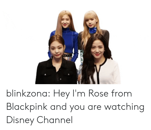 Disney, Tumblr, and Blog: blinkzona:  Hey I'mRose from Blackpink and you are watching Disney Channel