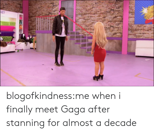 Stanning: blogofkindness:me when i finally meet Gaga after stanning for almost a decade