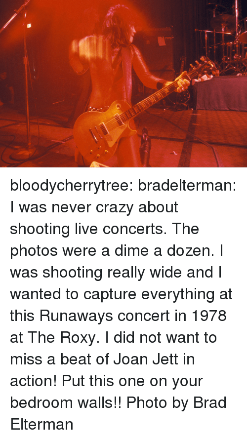 roxy: bloodycherrytree:  bradelterman:  I was never crazy about shooting live concerts. The photos were a dime a dozen. I was shooting really wide and I wanted to capture everything at this Runaways concert in 1978 at The Roxy. I did not want to miss a beat of Joan Jett in action! Put this one on your bedroom walls!! Photo by Brad Elterman
