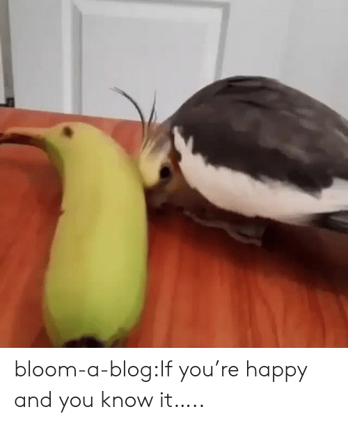 Tumblr, Blog, and Happy: bloom-a-blog:If you're happy and you know it…..