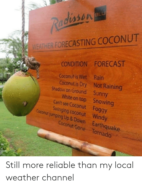 Condition: BLU  Radissen  WEATHER FORECASTING COCONUT  CONDITION FORECAST  Coconut is Wet Rain  Coconut is Dry Not Raining  Shadow on Ground Sunny  White on top Snowing  Can't see Coconut Foggy  Swinging coconut Windy  Coconut jumping Up &Down Earthquake  Coconut Gone Tornado Still more reliable than my local weather channel