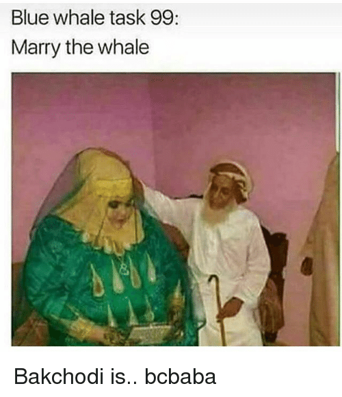 blue whale: Blue whale task 99:  Marry the whale Bakchodi is.. bcbaba