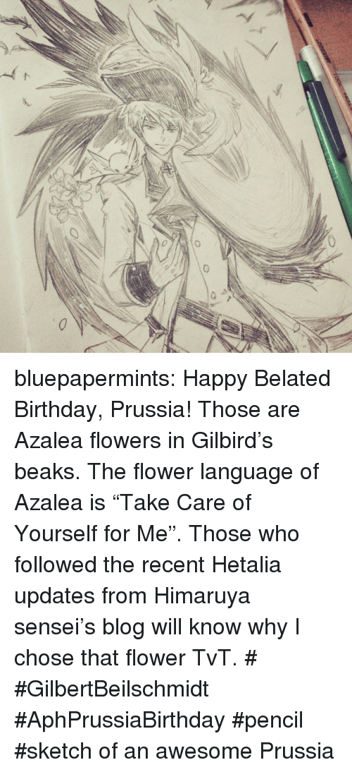 "Birthday, Target, and Tumblr: bluepapermints: Happy Belated Birthday, Prussia!  Those are Azalea flowers in Gilbird's beaks. The flower language of Azalea is ""Take Care of Yourself for Me"". Those who followed the recent Hetalia updates from Himaruya sensei's blog will know why I chose that flower TvT.  # #GilbertBeilschmidt #AphPrussiaBirthday #pencil #sketch of an awesome Prussia"