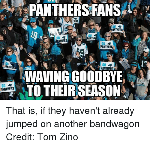 Zino: BO  NANTHE  PANTHERS  PANTHERS FANS  88  HERS  BO  PANTHERS  BO  BO  ANTHERS  PANTHER  GO  WAVING GOODBYE That is, if they haven't already jumped on another bandwagon Credit: Tom Zino