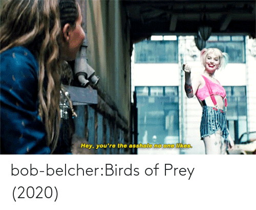 href: bob-belcher:Birds of Prey (2020)